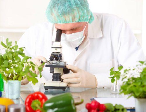 Sürdürülebilir Gıda Sistemleri ve Güvenliği